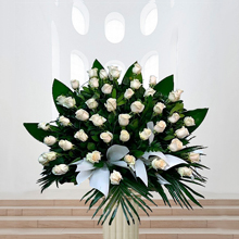 Centro abanico 50 rosas blancas para tanatorios Barcelona